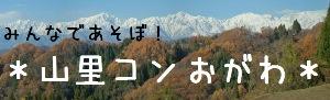 小川村の自然の中で合コン 山里コンおがわ